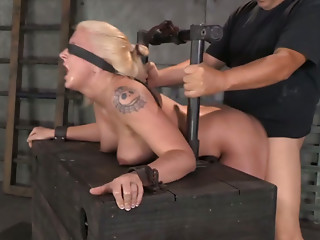 Doggystyle,Slut,MILF,BDSM,Big Boobs,Blonde,Blowjob,Hardcore