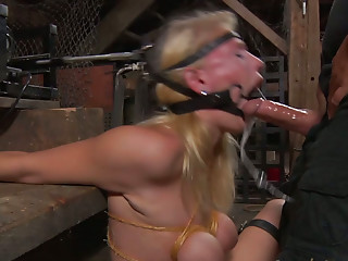Glasses,BDSM,Big Boobs,Blonde,Blowjob,Hardcore,Sex Toys,Masturbation,Big Ass