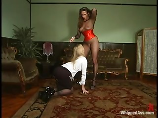 Tied up Adrianna Nicole sucks a dildo and gets toyed