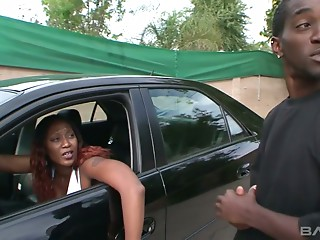 Big Cock,MILF,Big Ass,Black and Ebony,Blowjob,Hardcore,Outdoor,Public Nudity,Softcore,Stockings,Doggystyle,Car Sex